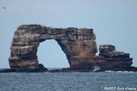 Highlight for Album: Galapagos