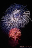 Highlight for Album: 4th of July Fireworks in Red Bank, NJ